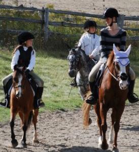 Equestrian Facility in Erin, ON
